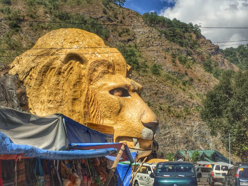 Kennon Road Lion